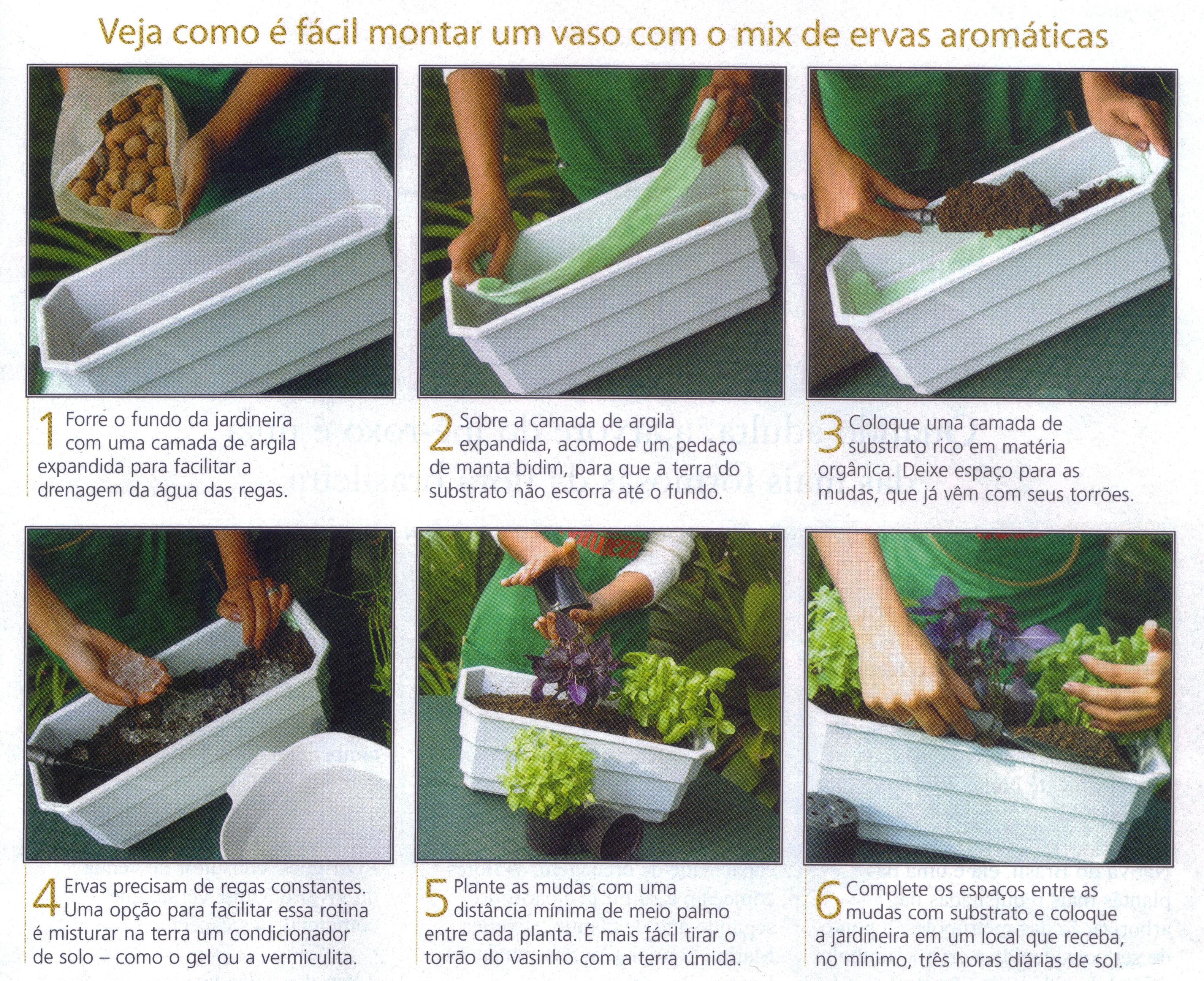 Coisas ideias doses di rias de design arte m sica e - Cultivar plantas aromaticas en casa ...